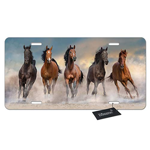WONDERTIFY Horse License Plate,Horse Herd Run Fast in Desert Dust Against Dramatic Sunset Sky Decorative Car Front License Plate,Vanity Tag,Metal Car Plate,Aluminum Novelty License Plate,6 X 12 Inch