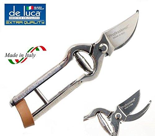 De Luca Forbice TRINCIA Pollo da Cucina 210 mm in Acciaio TEMPERATO