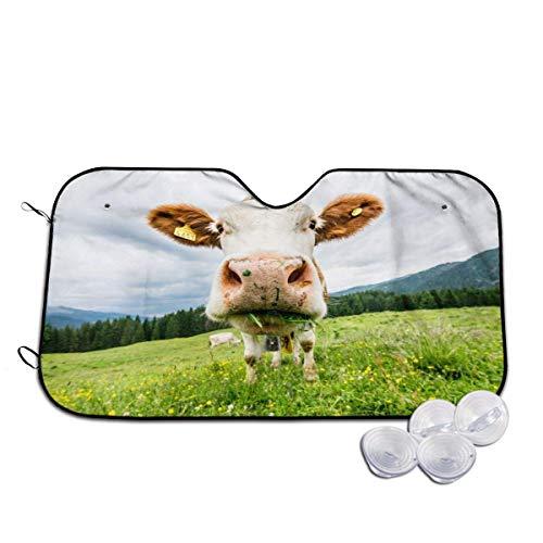 Parasol plegable para coche de vaca, para parabrisas de coche, portátil, bloquea los rayos UV para mantener tu vehículo fresco y libre de daños, 76 x 140 cm
