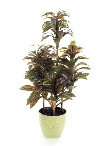 Closer To Nature Kunstblumen 2FT Grün und Weiß Dragon Tree Pflanze–Künstliche Seide Pflanze und Baum Serie, burgunderfarben, 60,1 cm