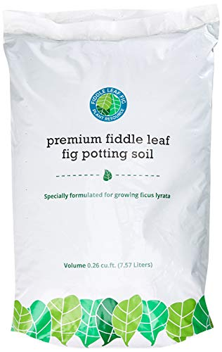 Premium Fiddle Leaf Fig Tree Potting Soil - Perfect for Indoor Plants