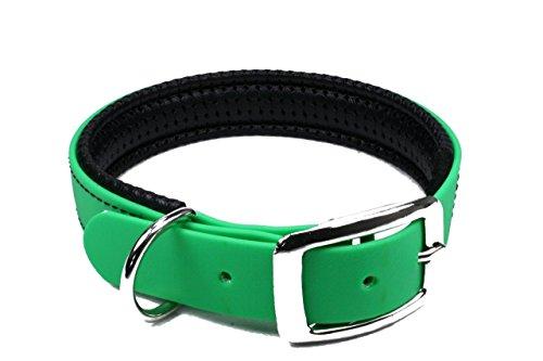LENNIE BioThane Halsband, gepolstert, Dornschnalle, 25 mm breit, Größe 38-46 cm, Neon-Grün, Aufdruck möglich