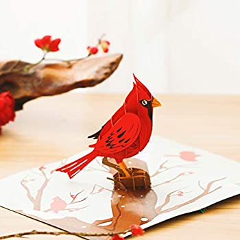 Liif Cardinal Bird 3D Greeting Pop Up Card Winter Christmas Thanksgiving Holiday Card Fall Xmas   With Message Note & Envelop   Size 7 x 5