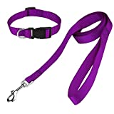 Tondwin Dog Collar and Leash Set Nylon, Collar and Leash for Dogs Classic Solid Colors Small(Neck 11'-15.5', Width 0.6'), Purple