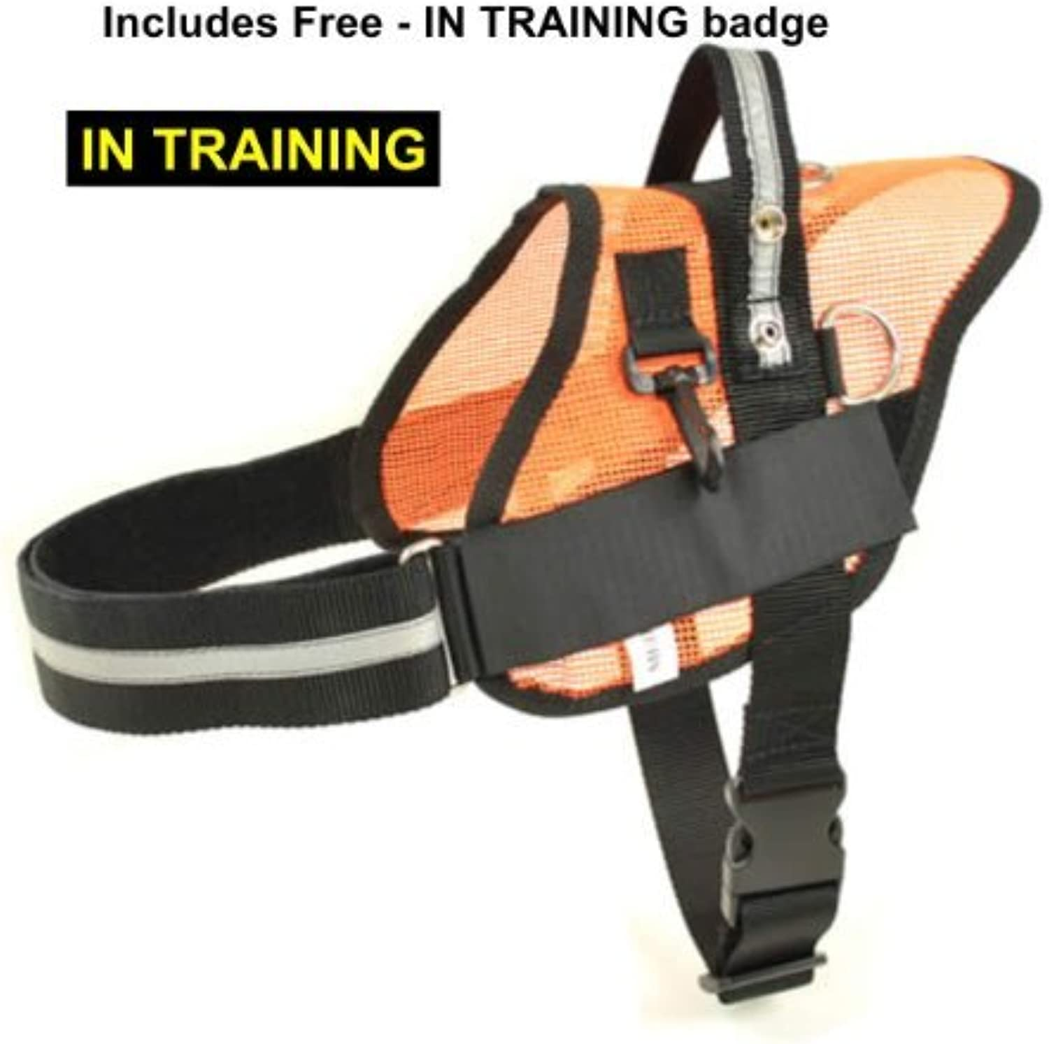 Light weight Mesh Service and SAR Dog Harness W Free IN TRAINING Badge (Medium)