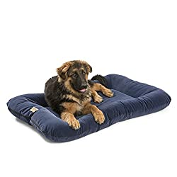 eco-friendly organic cotton dog beds
