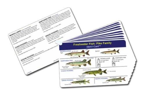 Ident-I-Cards Fish Set of 9 Freshwater Fish Identification Cards