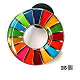 SDGs ピンバッジ バッチ バッジ 2020 最新仕様 琺瑯工芸 国連本部限定 (表面が丸みのあるタイプ(25個))