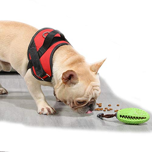 ZISITA Perro masticar Juguetes Cepillo de dientes para perros Mascotas Molar Limpieza de dientes Perrito Cachorro Cuidado Dental