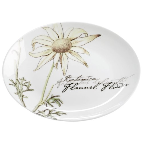 Maxwell & Williams s692146 Botanic Assiette, Assiette à Gâteau, Assiette Petit Déjeuner, Floral Flanelle, 15 cm, dans Un Coffret Cadeau, Porcelaine
