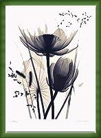 ポスター ジュディス マクミラン Lotus and Grasses 額装品 ウッドベーシックフレーム(グリーン)
