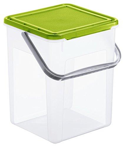 Rotho Basic Aufbewahrungsbox 9 l mit Deckel, Kunststoff (PP), transparent/grün (23 x 22,5 x 27,5 cm)