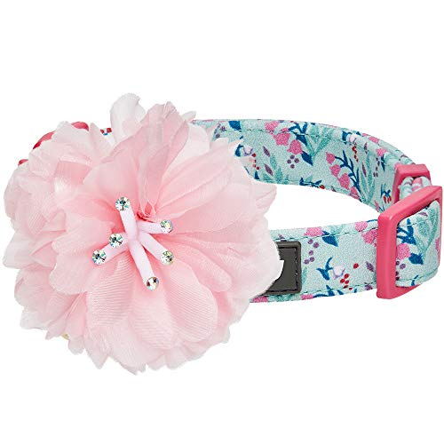 Blueberry Pet 4 Patterns Floral Power Lily of The Valley Designer Teal Green Adjustable Dog Collar with Detachable Pink Peony, Small, Neck 12'-16'