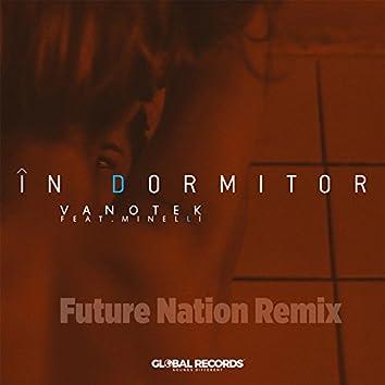 In Dormitor (feat. Minelli) [Future Nation Remix]