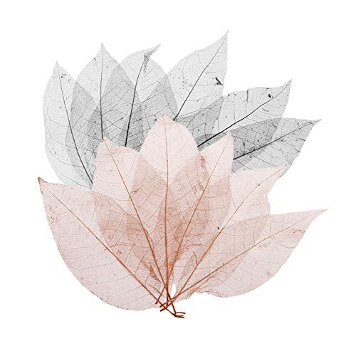 WQAZ Prägung 100 stücke Magnolia Skeleton Blatt Blätter Scrapbooking Verschönerung Schwarzer Kaffee Für Dekorieren Karten Kerzen Lampenschirme Scrapbooking Vasenfüllung