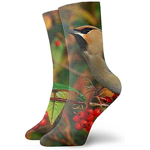 winterwang 3D arte artístico abstracto impresión pez océano Caral Vector unisex deporte élite calcetines