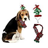 New Traditions Simplify Your Holiday 19 in L Felt Pet Wearable Mistletoe Headband/Scarf-SM/M