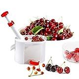 Removedor Máquina descarozador de aceitunas de oliva Pitter de frutas vegetales Herramientas Gadgets de cocina fácil cereza Pitter Container cereza Herramientas de cocina
