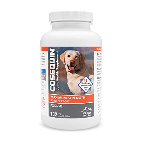 Nutramax Laboratories COSEQUIN Maximum Strength Joint Supplement Plus MSM - with Glucosamine and Chondroitin - for Dogs of All Sizes