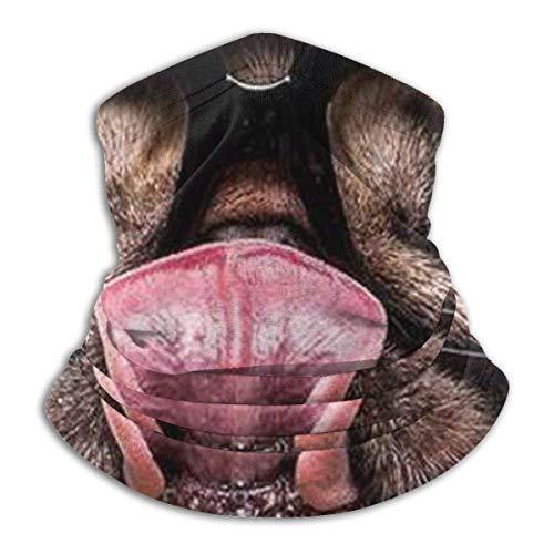 Dydan Tne Perro con Gafas Unisex Microfibra Calentador de Cuello Sombreros Pañuelo Facial