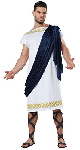 Grecian Toga Fancy Dress Costume Mens Adult Medium (40-42)