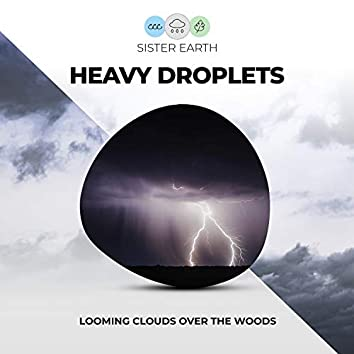 Heavy Droplets: Looming Clouds Over the Woods