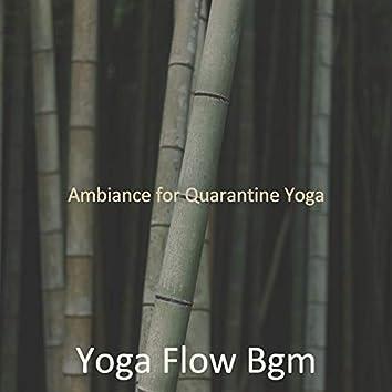 Ambiance for Quarantine Yoga