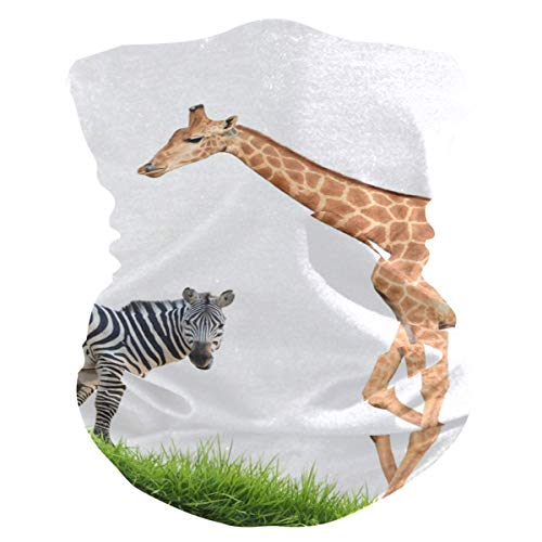 N / A Afrikanische Zebra-Giraffe,Nahtlose Kopfbedeckung,Männer Frauen Halstücher,Halsmanschette,Nahtloses Halstuch,Sturmhaube,Face Scarf Für Staub,Rundschal