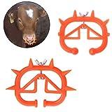 Xiaolizi 30PCS Vitello Weaner Bovino svezzamento Strumento Azienda zootecnica Anti succhiare Il Latte bovino Clip del Naso La Fattoria degli Animali Prodotti C42