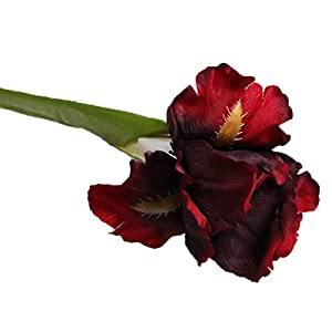 Allinlove 4 Bundle Real Touch Long Stems Iris Flower Silk Artificial Ireland Irish Iris Fake Flower for Wedding Decor Home Flower Arrangements Decoration Table Centerpieces, 26.8inch