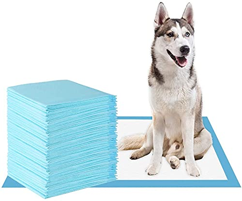 KIHKIH Dog Training Pad Puppy Training Pad Training Pad for Pet Puppy Pads Pet Training Pads Training Pads for Dogs Extra Large (S(13'18'), 20 Counts)