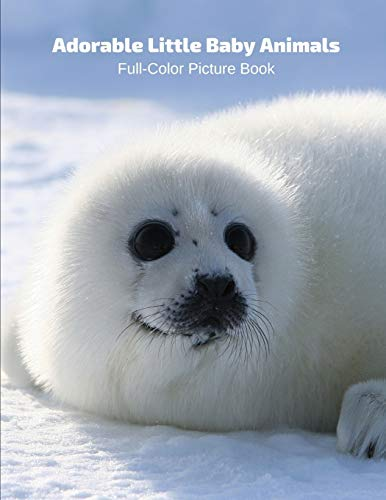 Adorable Little Baby Animals Full-Color Picture Book: Animals Photography Book