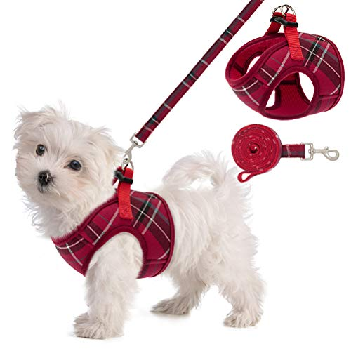 Small Dog Harness Vests
