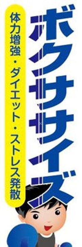 ゴミ固執モニカのぼり旗スタジオ のぼり旗 ボクササイズ011 大サイズH2700mm×W900mm