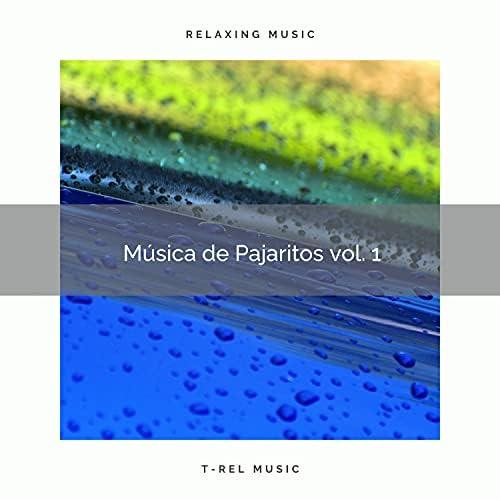 Sonidos De Agua & Pajaritos Cantando