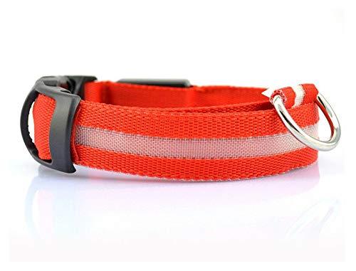Cmdzsw Collares de nailon para perros que brillan por la noche en la oscuridad fluorescentes collares brillan en las correas para perros Suministros para mascotas (color: collar rojo, tamaño: XS)