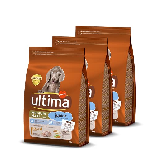 ultima Pienso para Perro Medium - Maxi Junior con Pollo, Pack de 3 x 3 kg - Total 9 kg