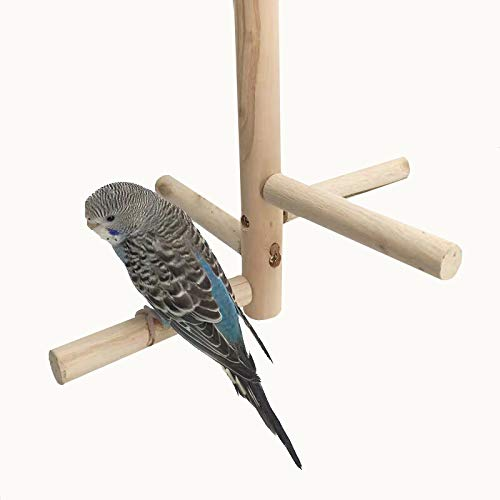 WYunPets Bird Perch, Parrot Birdcage Stand Natural Toys Natural Wooden Activity Branches Climbing Stairs for Conure Parakeet Budgie Cockatiels Lovebirds