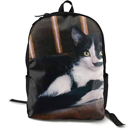Sessel Kätzchen Lie Gepunkteter Schulrucksack Schultasche Büchertasche Reise Laptop Rucksack Casual Daypack für Kinder Studenten Erwachsene