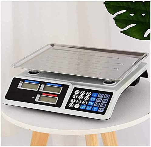 Digital Scale 30kg 1g Max 76% OFF Weighing Steel Max 58% OFF El Scales Stainless
