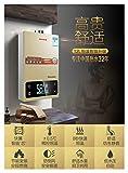 12L 16L Calentador de Agua de Gas conversión de frecuencia de baño conversión Constante Inteligente Temperatura Constante Natural licuado Gas de emisión Fuerte (Color : Gold 16L, Size : EU)