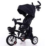 CHRISTMAD Hat Trolley para Bebé Triciclo para Niños Empuje Bidireccional con Toldo Adecuado para 80 Cm-120 Cm Niña Niño Peso De 25 Kg,B