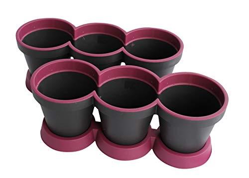 Set Van 2 3 in 1 Kruidpot Bloempot Plastic Voor Vensterbank/Keuken 40 cm Tweekleurig Paars