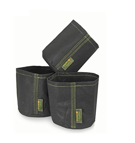 Espacio Vegetal Maceta geotextil 5 litros sin Asas.Pack de Tres unds. PLANTPOT.