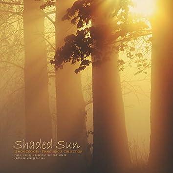 A shady sun