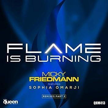 Flame Is Burning (Remixes, Pt. 2)