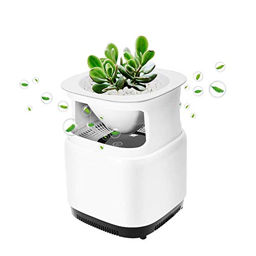 SZHWLKJ Purificatore d'Aria, for la Polvere, polline, odori, Fumo, allergie, batteri, muffe, Animali Dander, 25 Decibel, Home & Office USA