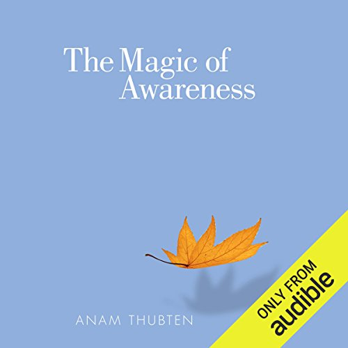 The Magic of Awareness cover art