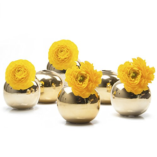 "Chive - JoJo Small 3"" Sphere, Round Ceramic Flower Vase, Decorative Modern Floral Vase for Home Decor Living Room Centerpieces and Events, Cute Bud Vase - Bulk Set of 6 - Gold"