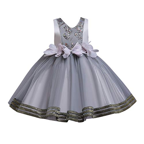 BOIYI Disfraz de Princesa Chicas Fancy Vestido de Flor Princesa Flor Desfile de Nios Vestido de Cosplay de Carnaval, Halloween y la Fiesta de Cumpleaos Vestidos Vestido de Fiesta(Gris,100)